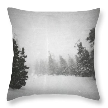 Throw Pillow featuring the photograph One Night  by Mark Ross