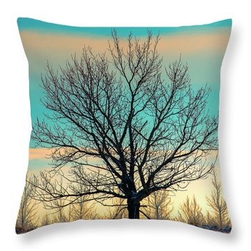 Throw Pillow featuring the photograph One by Nina Stavlund