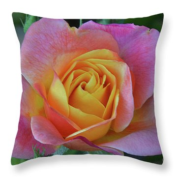One Of Several Roses Throw Pillow by Debby Pueschel