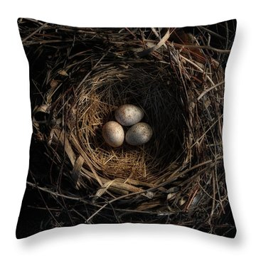 Throw Pillow featuring the photograph One Of The Most Private Things In The World Is An Egg Until It Is Broken Mfk Fisher by Mark Fuller