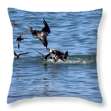 One Pelican Diving  Throw Pillow