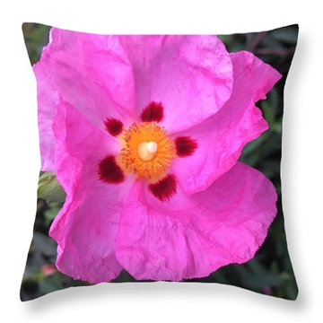 One Perfect Pink Throw Pillow