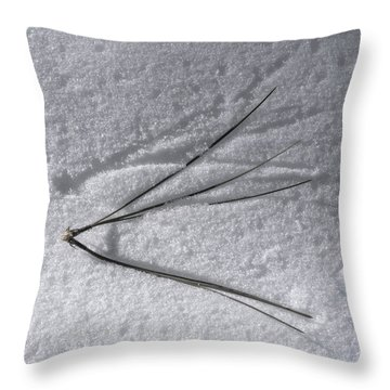 One Small Leap Throw Pillow