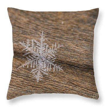 Throw Pillow featuring the photograph One Snowflake by Ana V Ramirez