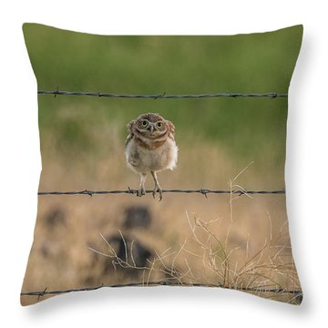 One Sweet Goodnight Throw Pillow