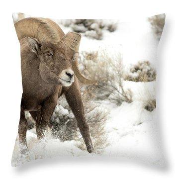 One Tough Guy Throw Pillow