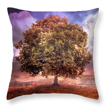 Throw Pillow featuring the photograph One Tree In The Meadow by Debra and Dave Vanderlaan