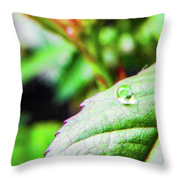 One Waterdrop Throw Pillow by Cesar Vieira