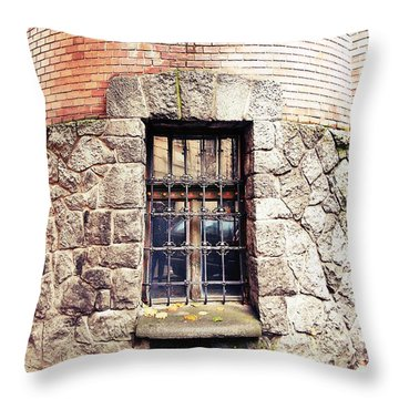 One Window And A Half Throw Pillow