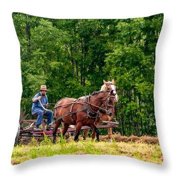 One With The Land Throw Pillow by Steve Harrington