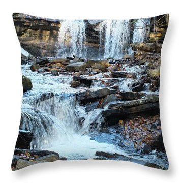 Oneida Falls 4 - Ricketts Glen Throw Pillow