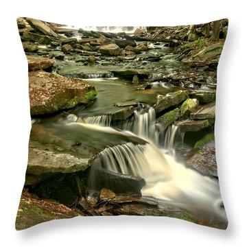 Oneida Falls Cascade Portrait Throw Pillow
