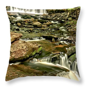 Oneida Falls Portrait Throw Pillow