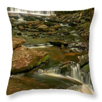 Oneida Falls Portrait View Throw Pillow