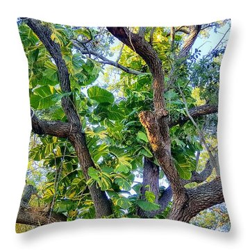 Oneness Discovery Throw Pillow