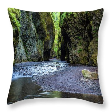 Throw Pillow featuring the photograph Oneonta Gorge by Pierre Leclerc Photography