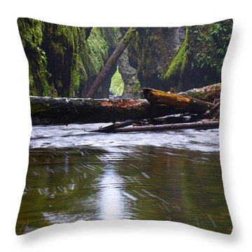 Throw Pillow featuring the photograph Oneonta Pano by Jonathan Davison