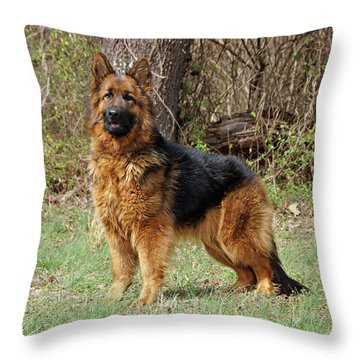 Throw Pillow featuring the photograph Onja by Sandy Keeton