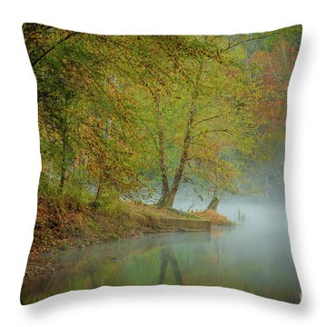 Throw Pillow featuring the photograph Only If I Go by Iris Greenwell