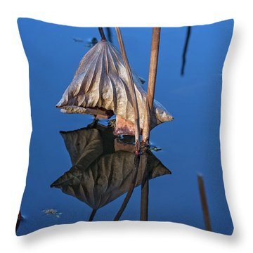 Throw Pillow featuring the photograph Only In Still Water by Linda Lees