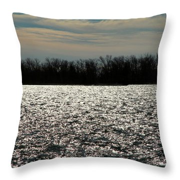 Throw Pillow featuring the photograph Ontario Winter Reflections by Valentino Visentini