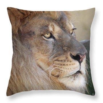 Onyo #21 Throw Pillow