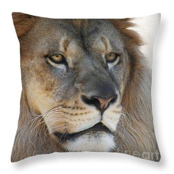 Onyo #3 Throw Pillow