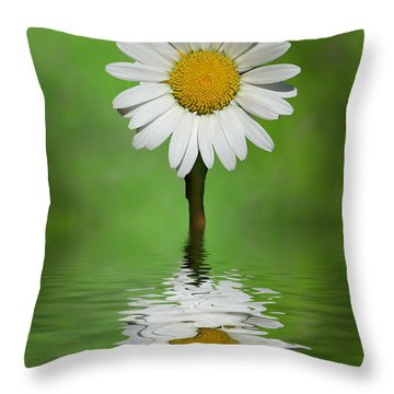 Oops Za Daisy Throw Pillow