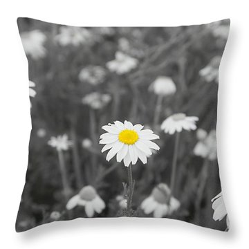 Throw Pillow featuring the photograph Oopsy Daisy by Benanne Stiens