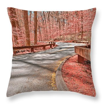 Opalescent Forest Road Throw Pillow