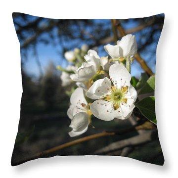 Open For Beesness Throw Pillow