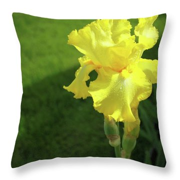 Open Throw Pillow by Jane Autry