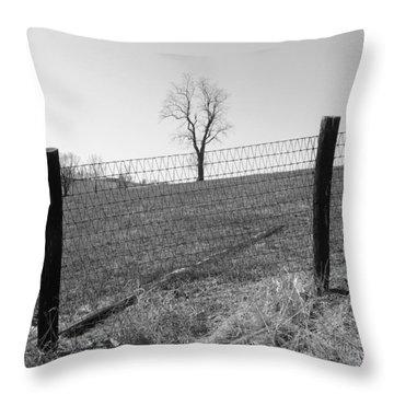 Open Land Throw Pillow