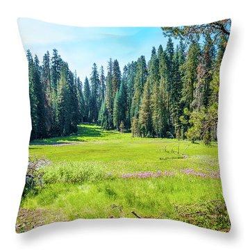 Open Meadow- Throw Pillow