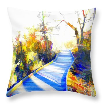 Open Pathway Meditative Space Throw Pillow