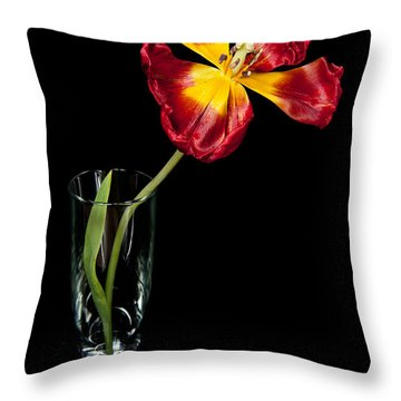 Open Red Tulip In Vase Throw Pillow by Helen Northcott