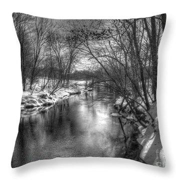 Open River Throw Pillow