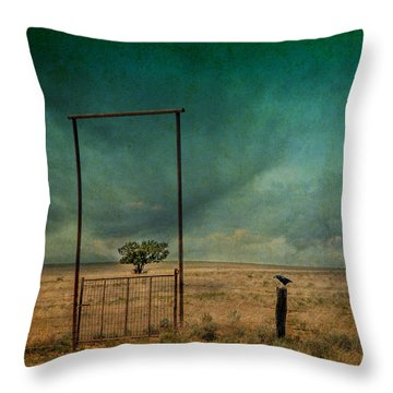 Open Space Throw Pillow by Carolyn Dalessandro