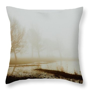Throw Pillow featuring the photograph Open Space by Iris Greenwell