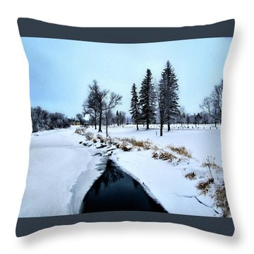 Open Waters Throw Pillow