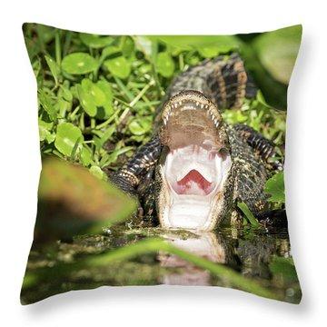 Open Wide Throw Pillow