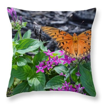 Open Wings Of The Gulf Fritillary Butterfly Throw Pillow