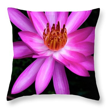 Opening - Early Morning Bloom Throw Pillow