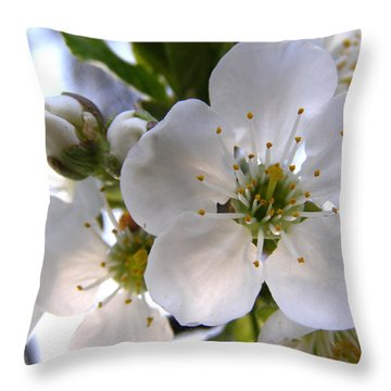 Throw Pillow featuring the photograph Opening Act -  Cherry Blossoms by Angie Rea