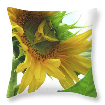 Opening Day - Sunflower - Floral Photography Throw Pillow
