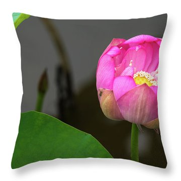Throw Pillow featuring the photograph Opening Lotus Lily by Dennis Dame