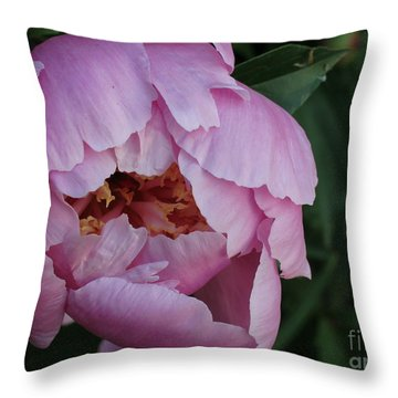 Throw Pillow featuring the photograph Opening Flower by Rod Ismay