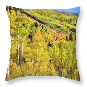 Throw Pillow featuring the photograph Ophir Road Hillside by Ray Mathis