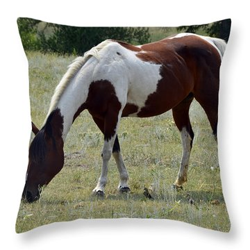 Opposites In Harmony Throw Pillow by Ken Smith