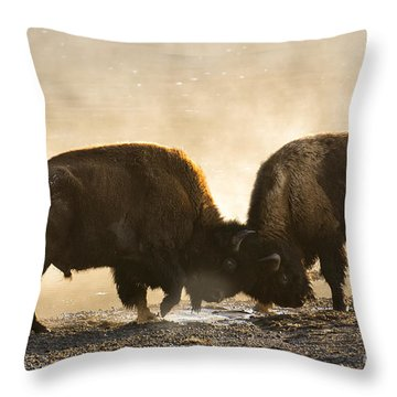 Opposing  Throw Pillow by Aaron Whittemore